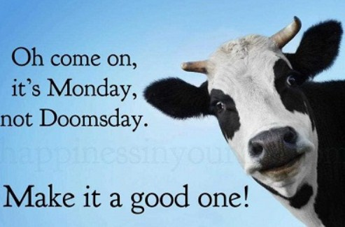 Blue Monday Quotes